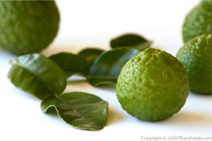 Kaffir Lime Picture