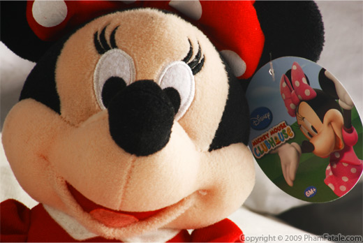 Disneyworld Picture
